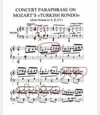 ヴォロドス編曲のトルコ行進曲の楽譜を探しています。ネットで探してダウンロードした楽譜がYouTubeに出てるものと違って、正しいものを探しています。 この後の部分もちらほらおかしいです。