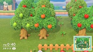 森 の 植え 方 あつ 木