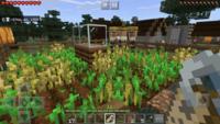 iPhoneアプリのマインクラフトで全自動農場を作ったのですが、下にホッパー付きトロッコを走らせてます。ですが村人が小麦をとってしまいチェストに小麦が入りません。原因わかる方いますか?