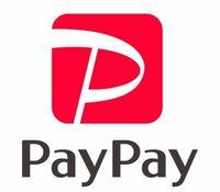 PayPayでメールアドレス登録するとメリットありますか? あとデメリットありますか?