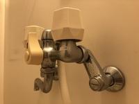 止水ボタンがある節水シャワーヘッドを買おうと思っています。  賃貸で温度調節は給湯器についているつまみで行えます。シャワーはお湯の蛇口をひねればお湯が出ます。水とお湯で温度調節する タイプではありません。  逆止弁は必要でしょうか? また、止水ボタンで止水した後ちゃんとお湯は出るでしょうか?