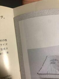 雑誌のページについて質問です。 雑誌の中に上辺や端が短く切り落とされ小冊子のようになっているページがたまにありますが、あれはなんと言いますか?雑誌の表現として名前があったら教えてください。  こういう...
