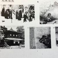 この写真の左上と右下のやつは何かわかる人いますか??教えてください
