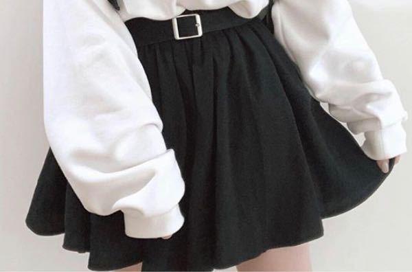 女性の方に質問です。 プリーツスカートと普通のスカート(写真)ってどっちの方が着まわしやすい(使いやすい)ですか?