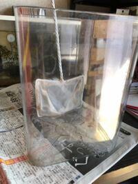 20×20のキューブ型水槽にネオンテトラ5匹 コリドラス1匹 ヤマト・ミナミヌマエビ各1匹は過密ですか?