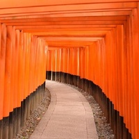 京都の伏見稲荷大社にお詳しい方へお伺いをいたします。 ・ 京都の伏見稲荷大社の赤い鳥居は1000本を越えているということですが、成人男性が普通に歩くと最後の赤い鳥居をくぐりぬけるまで、おおよそどのく...