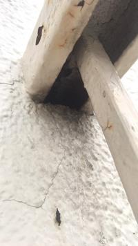 雀が壁の中に巣を作り困ってます。この施工は瑕疵に該当しないでしょうか? 中古物件をリノベーションして住んでおります。外壁に穴がありそこから壁の中に雀が入り込んで巣を作ってしまったよ うです。卵が孵化...