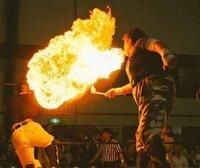 ミスターポーゴが火炎噴射をするとき 口に含んでいたのはガソリンだったんでしょうか?  それともエタノール等のガソリン以外の可燃液体?
