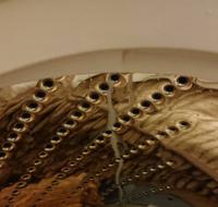 昨日購入して、本日のお昼頃に届いた洗濯機なのですが洗濯終了のブザーが鳴り蓋を開けると 画像のように洗濯槽の穴から白い液体(恐らく柔軟剤)が垂れている状態になっています。  洗剤や柔軟剤の量などしっかり守っ...