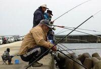 この釣りの雑コラみたいな写真どうなってるんですか?