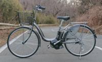 電動アシスト自転車を輪行できますか? もちろん、かごや後ろの荷物台やスタンドは取り除き、前タイヤは外します