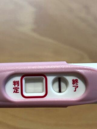 陰性 高温期23日目