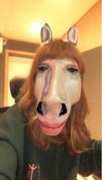 この馬顔になる顔変化アプリを探していますが 全く分からなくて困っています。 どなたか知っている方いたら教えて下さいm(__)m