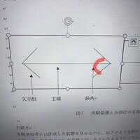 ワードについてです。  画像の赤い線のようなものをワードで作成したいです。  やり方わかる方教えてください