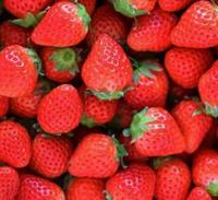 日本以外でいちごが美味しい国はどこですか?