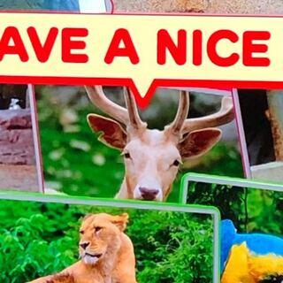 動物園,ヤギ,めざましテレビ,アキシスジカ,アクシスジカ,子,シカ