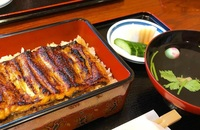 東京都区内でうな重(この日は愛知一色産)を食べました。 肝吸いとお新香付きで税込2500円でした。都内だと適正な価格ですか? ご飯は大盛無料で店主が注文の度に文化鍋で炊いていました。