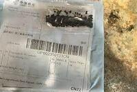 皆さんは中国からの謎の種、届きましたか? 今日、朝に郵便ポストに入っていました。しっかりと閉じてある封筒に入っています。 まだ中身は開けていません。外来種らしく、あけないほうがいいと伺います。 黒い...
