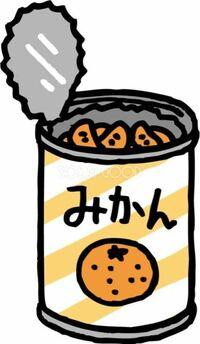 ミカンの缶詰ですが、 直接缶から食べるのは許容範囲でしょうか?   ① プラスチックのスプーンならば許す  ②考えられない    身近な人で 直接 缶から金属製のスプーンで食べて ジュースも缶に口をつけて飲む人が...