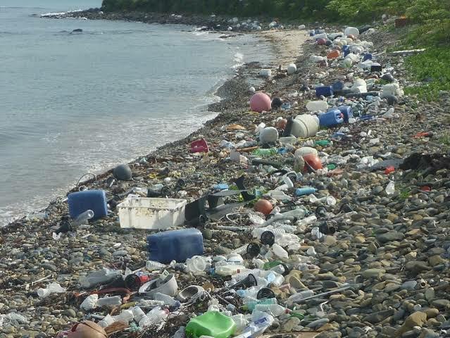 レジ袋有料化でエコバッグを使う人が増えてからどのぐらいの期間で海洋汚染が改善されますか。 かなりタイムラグがあると思いますが目に見えて分かるのは何十年何百年という期間が必要ですか。