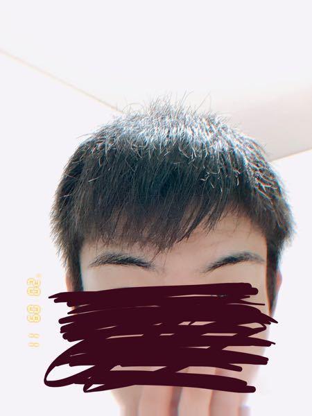 マッシュヘアにしたいんですが この髪質でもいけるもんなんですか? 一応風呂上がりで髪下ろして撮...