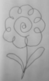 大喜利 この花の花言葉は何でしょうか?