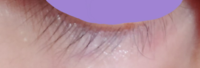 この下睫って長いですか?短いですか?