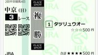 中京3Rの添付馬券をどう思いますか?^^  これで残高900円ですわ。。。(泣)