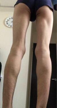 女性に質問です この脚どう思いますか?