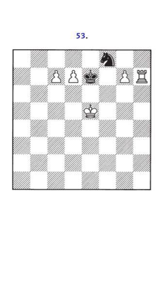 チェスの話しです。 一手で解けますか?