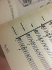 コントラバスの楽譜って1オクターブ低いですか? ヘ音記号の下に8って書いてないですが、どの音が正解なのでしょうか