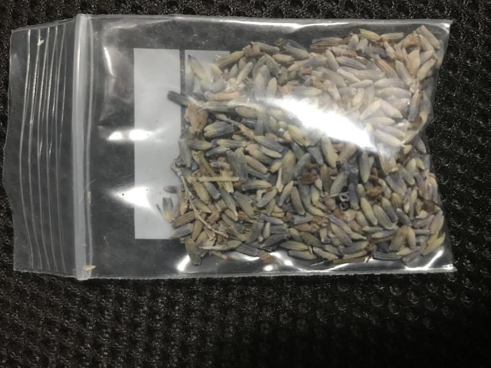 この袋の種は何ですか? 気になるので教えて頂きたいです。