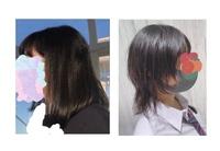 今週髪の毛を切りに行きます。 ウルフカットにしたいなと思っています。 髪が太くて硬くて毛量も多く広がりやすいので5月頃に縮毛矯正をかけて、遺伝で高校生ながら白髪がまばらに生えている(内側に多め)ので8月上旬に美容院で染めました。どちらもそれからリタッチをしていないので、今回どちらかリタッチしようと思います。  ①縮毛と白髪染めのどちらをリタッチをした方がいいでしょうか?(白髪部分は3c...