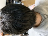 クセ毛にボブは無理ですか? ボブを目指して髪を伸ばしていますが、このようなクセがあります。 縮毛矯正かけないと綺麗なボブにはなりませんか? (画像は何故か横向きになってしまいます。すみません)