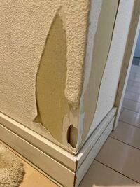 壁紙が破れて穴が空いてしまった箇所について。 壁紙を下部分だけ張り替えようと思うのですが 画像の通り、穴があいています。 壁紙を貼る前にパテで埋めてから貼った方がいいのではと思うのですが その場合のパ...