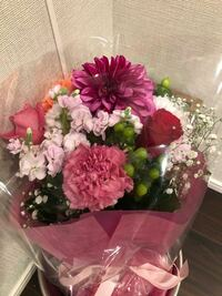 今日お母さんの誕生日でお父さんがお花を買ってきました。ですがお母さんは不機嫌そうです。お父さんには黙って理由を聞きました。あのお花が縁起が悪いといいます。ですが僕はお花に詳しくありません。せっかく...