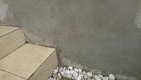 蟻が卵?の様なものを持って大量発生してます。家の壁に隙間ありそこに移動 ️ 大丈夫でしょうか。 木造住宅で白蟻との関係も気になります(^-^;)