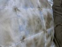 羽毛布団の中身の羽が黒っぽくなっているのですが、カビでしょうか? 表面の布地は綺麗な状態です。 今年春に自宅のドラム式洗濯乾燥機で洗濯と乾燥を掛けて、今日まで45リットル袋に入れてクローゼット保管して...