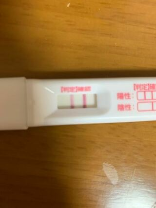 チェックワンファスト 高温期13日目