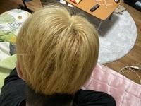 この髪色にエンシェールズのシルバーやマニックパニックのエイリアングレーを使うとしっかりとグレーに染まりますか??
