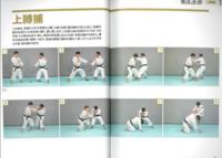 総合格闘技って、立ってる時に相手腕を掴んで、ヘッドロックとか、関節技、投げ技をしてもいいんですか? ↓↓↓少林寺拳法の技です。