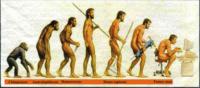 他の生物の種類を、 善や正義や真実や美などの、 抽象語により判断しなかったように、 人類の個体についても、 そうであることが、 進化と生存に、不可欠ですか。  人類は、 他の生物に食べられなければ、 安心で...
