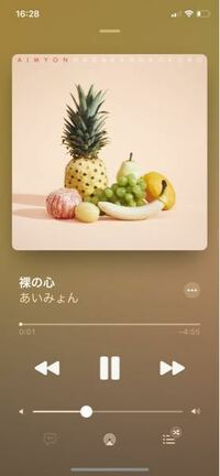 Apple Musicについてです。月額制ではなく、iTunesから1曲だけ購入した場合(CDから取り込むのではなく、スマホのiTunesアプリから単体で購入)歌詞は表示されないのでしょうか? 歌詞のマークのところは選択でき...