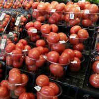 税込み年収がおおよそ380万円以下の方へお伺いをいたします。 ・ スーパーマーケットで販売されているトマトはときどきは買っていらっしゃいますでしょうか。 ・ 正直なところいかがでしょうか。