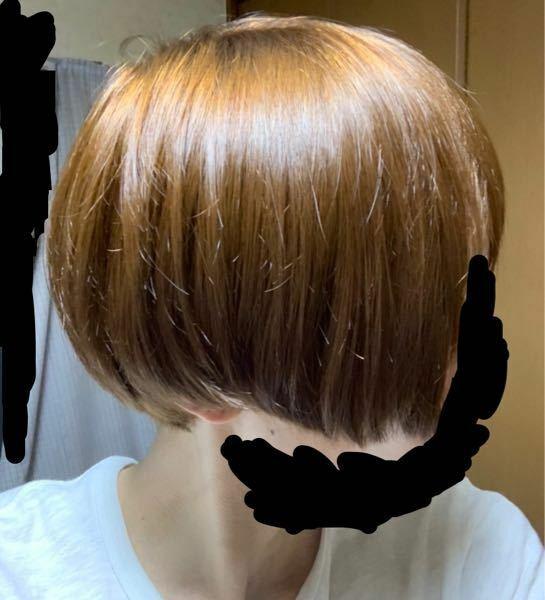 若い女性に質問です。 この髪型は男と女、どっちに見えますか?