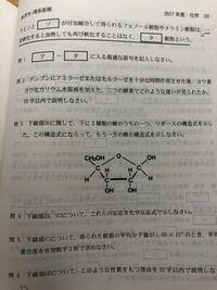 金沢大学の化学です。 写真のリボースの構造式はこれで合っているのですか?セミナーとかを見ると1位のヒドロキシ基と水素原子は写真のものと逆なのですが… どなたか教えてくださいm(_ _)m