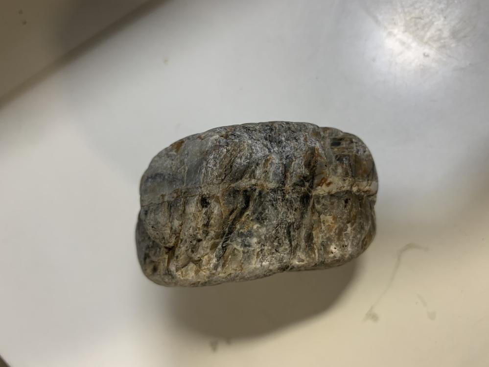 川の近くで横に線が入った石を見つけたのですが、一体なんなんでしょうか? 誰か教えてください❗️