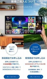 WOWOWは配信経由の方に加入してもテレビでログインできますか? テレビでライブを見たいので教えてください。