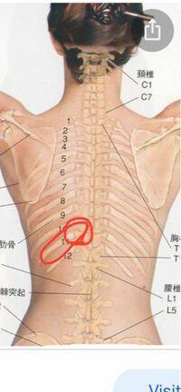 何 背中 科 の 痛み 左側 背中の痛みが左側でやけにチクチクする?!