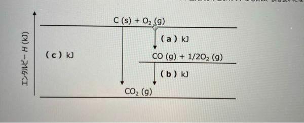 図中の(b)に当てはまる数字を整数で教えて下さい。